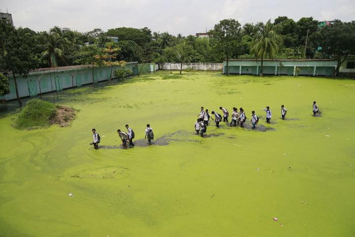 Дети идут по затопленному полю, Бангладеш. Из-за наводнения и токсичных отходов промышленных предприятий вода стала зелёной. Автор: Suvra Kanti Das.