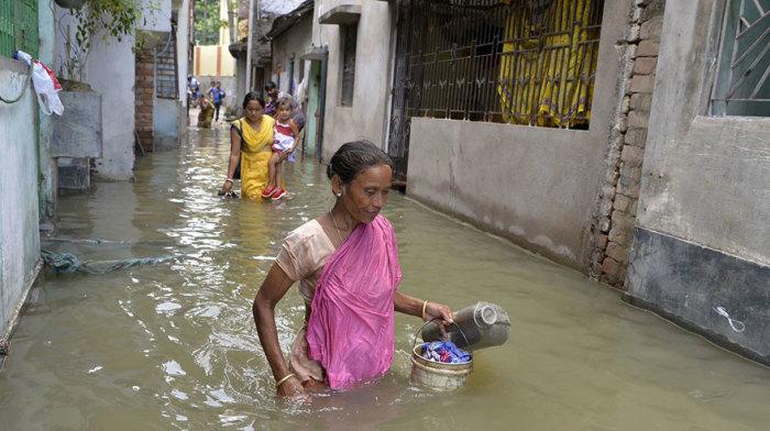 Малда, Западная Бенгалия, Индия. Автор: Diptendu Dutta.