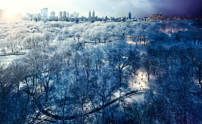 Центральный парк, Нью-Йорк. Автор работ: Стефан Вилкс (Stephen Wilkes).