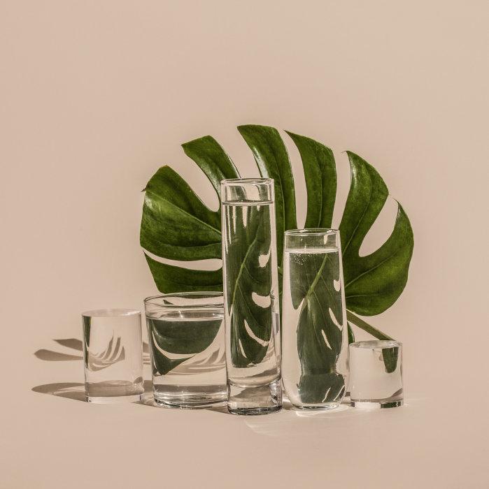 Зелёный лист сквозь призму воды. Автор: Suzanne Saroff.
