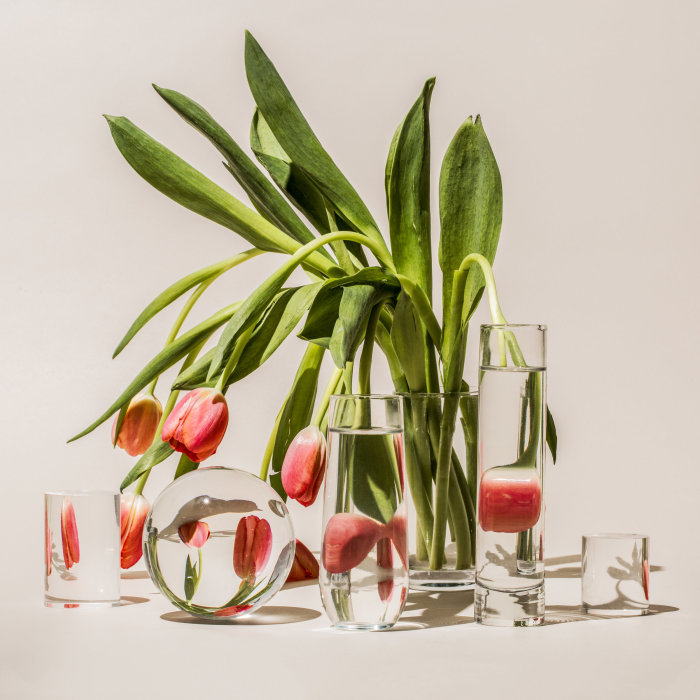 Тюльпаны. Автор: Suzanne Saroff.