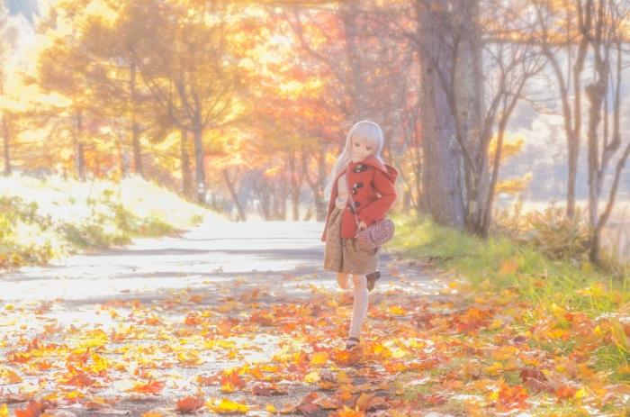 Осень. Авторы фото: Suzuhico и AZURE.