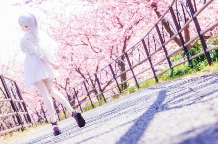 Весенняя прогулка. Авторы фото: Suzuhico и AZURE.