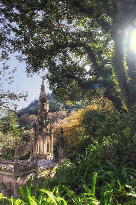 Дневной свет. Quinta da Regaleira. Фото Taylor Moore.