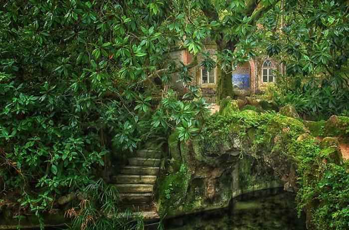 Великолепный пруд. Quinta da Regaleira. Фото Taylor Moore.