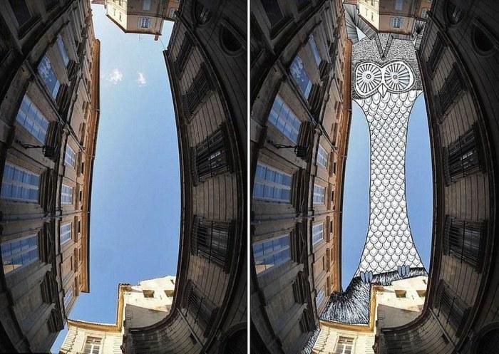 Twit twoo: чёрно-белая иллюстрация совы смотрит на эту овальную форму. Автор: Thomas Lamadieu.