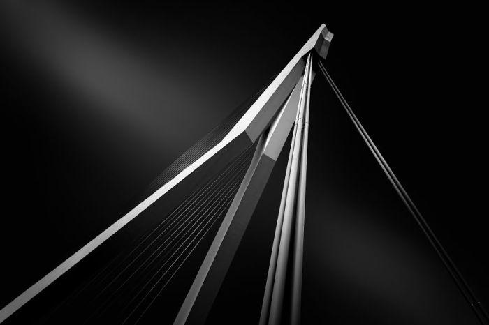 Мост Эразма в Роттердаме. Автор: Tobias Gawrisch.