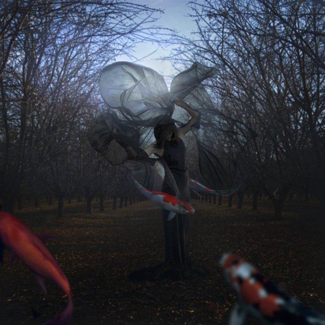 Мир сюрреализма в работах Трини Шульц (Trini Schultz).