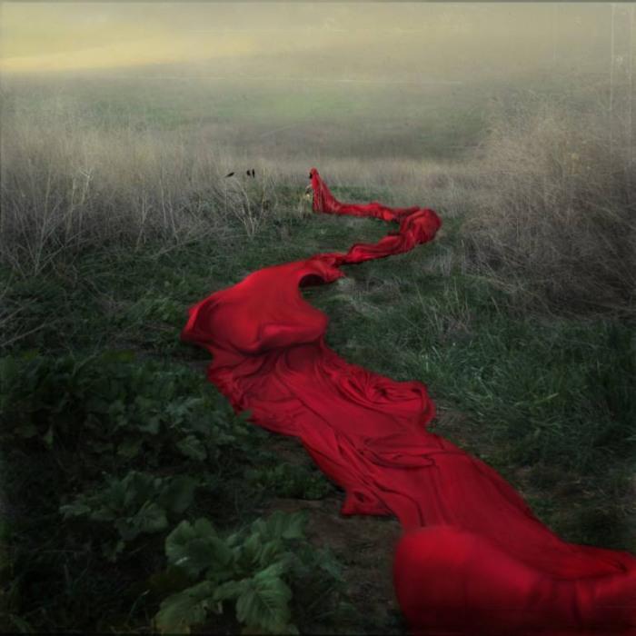 Красная река путешествий (Red River's Journey). Автор работ: Трини Шульц (Trini Schultz).