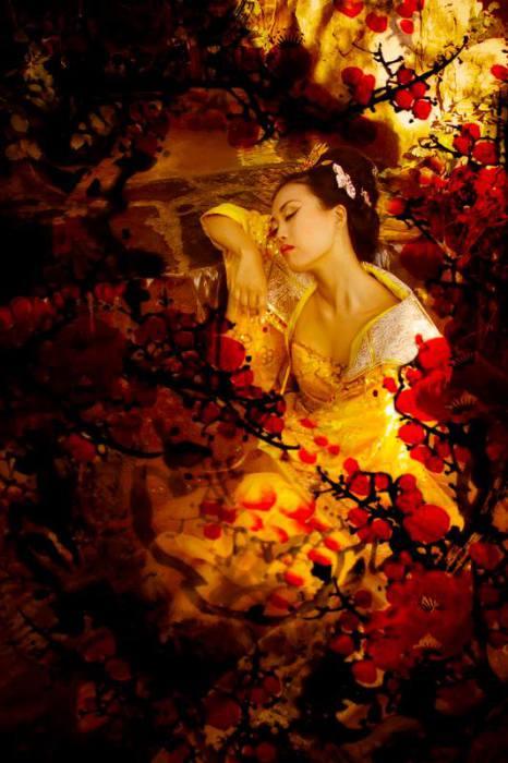 Красота, которая затмила луну и цветы. Автор: Viet Ha Tran.