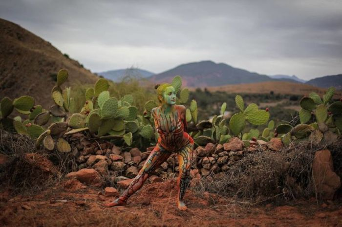 Долина кактусов. Автор: Vilija Vitkute.
