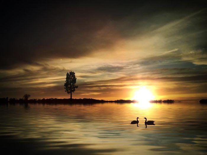 Потрясающий закат. Автор фото: Мелисса Винсент (Melissa Vincent).