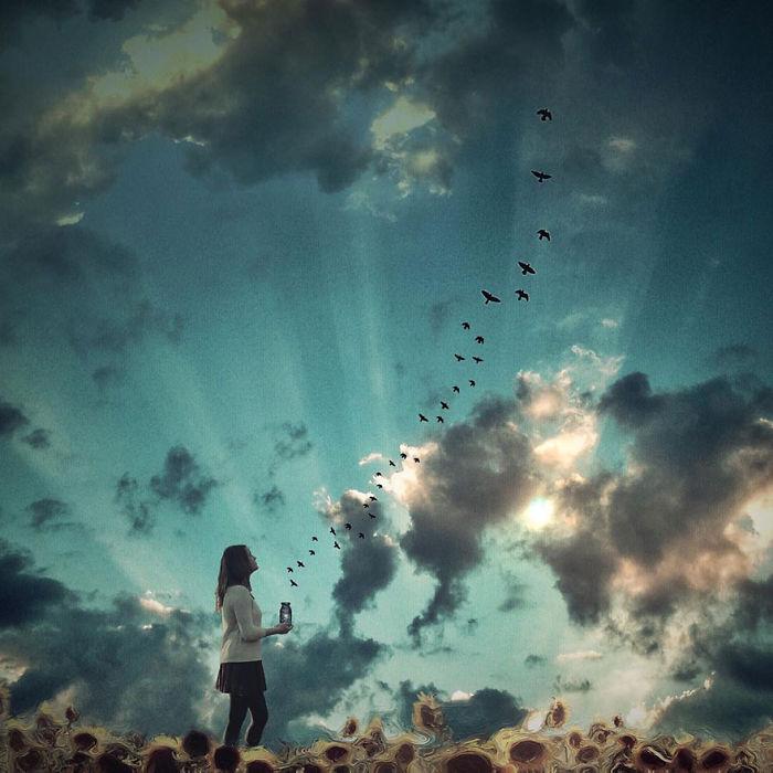 Птицы в небо. Автор фото: Мелисса Винсент (Melissa Vincent).