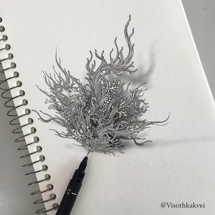 Растение. Автор: Visoth Kakvei.
