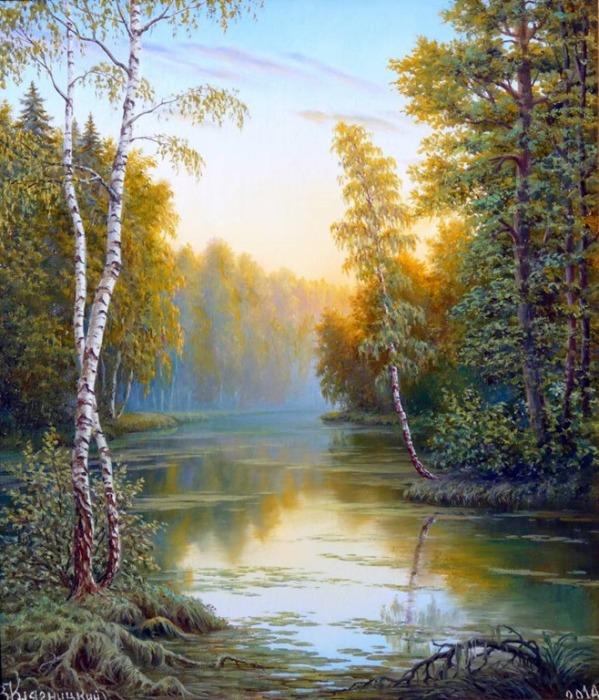 Утро в лесу. Автор: Владимир Княгницкий.