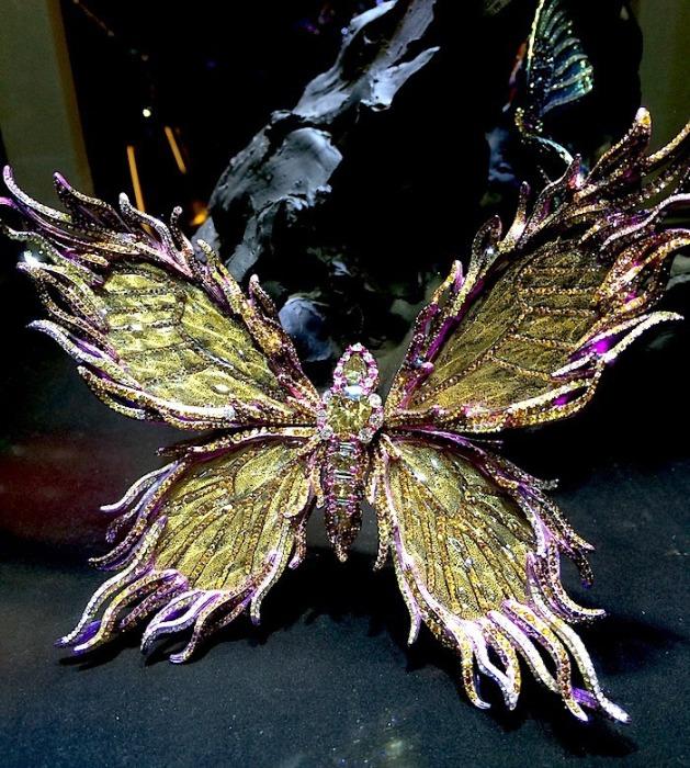 Экзотическое насекомое. Автор: Wallace Chan.