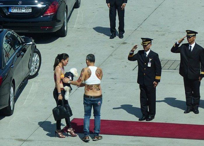 Фу-Фу - тот самый виновник торжества. \ Фото: google.com.