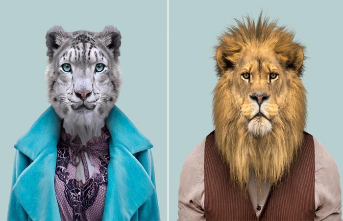 Модные портреты животных. Автор: Yago Partal.
