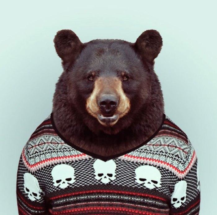 Медведь.  Автор: Yago Partal.