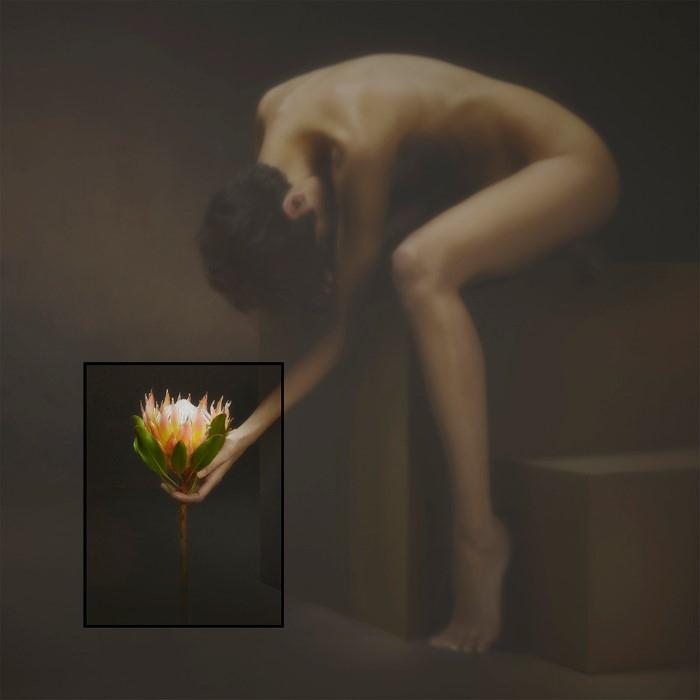 Девушка с цветком. Автор: Yoram Roth.