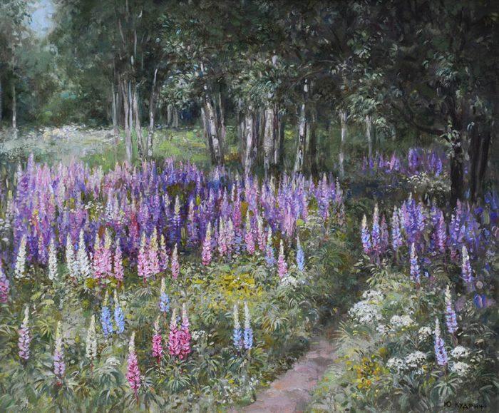 Люпины цветут. Автор: Юрий Кудрин.