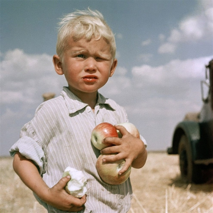 Целина молодела, Кустанайская область, 1962 год. Автор: Юрий Абрамочкин.