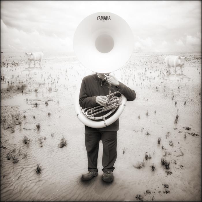 Концерт на саксофоне и две свиньи. Автор: Yves Lecoq.