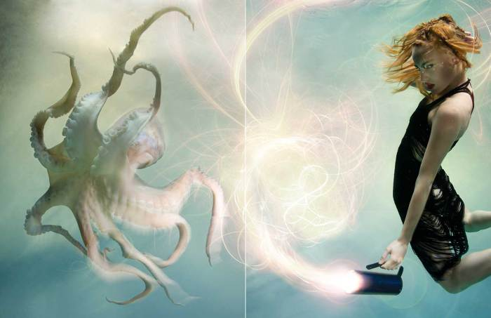 В поисках осьминога. Автор: Zena Holloway.