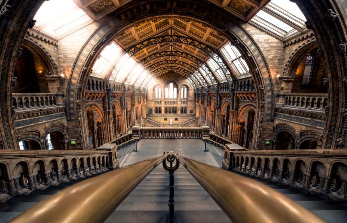 Музей естественной истории Лондона. Автор фото: Giuseppe Torre.
