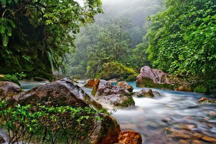Невероятно красивая природа. Коста-Рика.