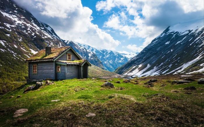 Отдых в гороха. Норвегия.