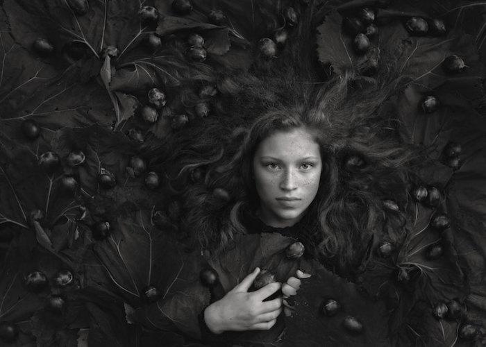 Сливы. Автор: Mariola Glajcar, Польша.
