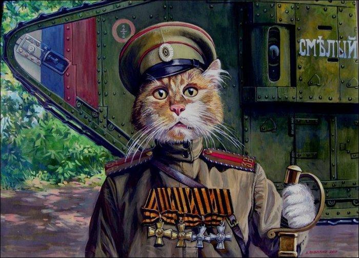 Полный кавалер (кот Тимоша). Автор: Александр Завалий.