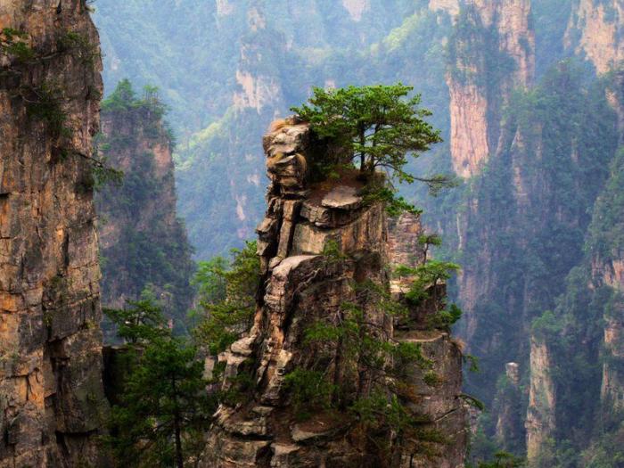 Знаменитые горы с планеты Пандора.