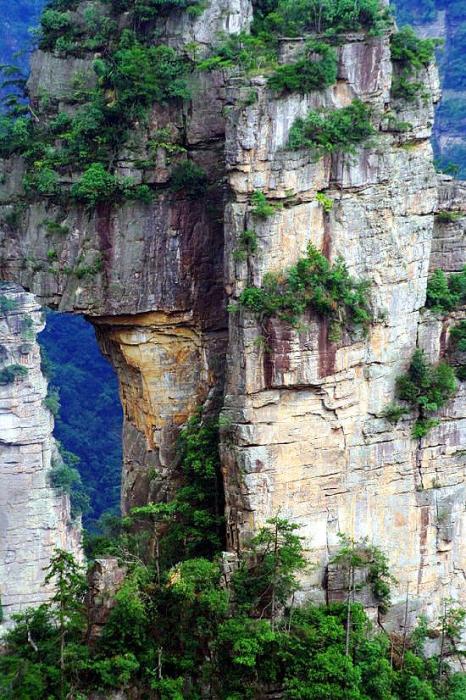 В этих горах проходили съемки фильма «Аватар».