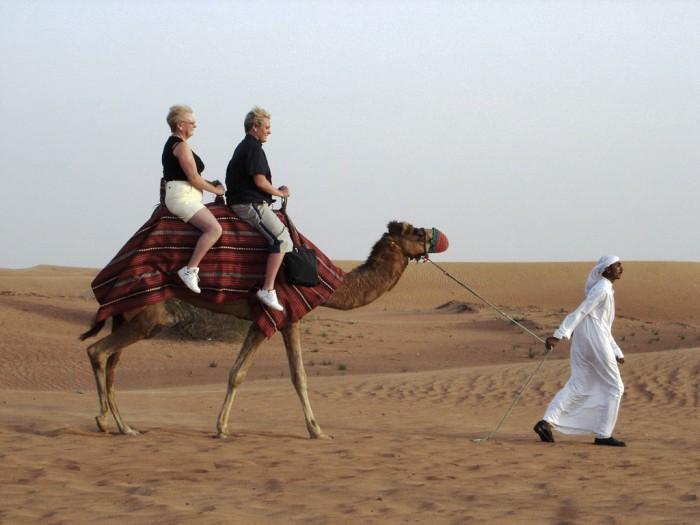 Спокойная прогулка на верблюдах. Автор фото неизвестен.