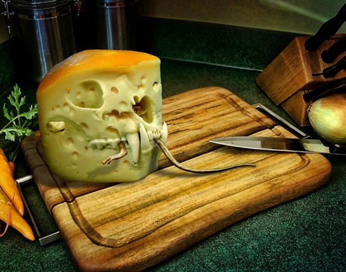 Хищный сыр.