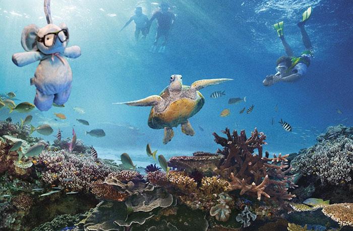 Слон тусуется с черепахами у Большого Барьерного рифа.