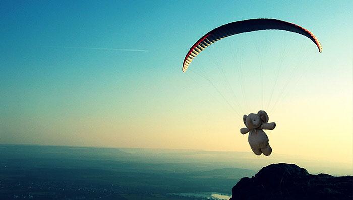 Ко всему прочему, слон успел полетать на параплане.