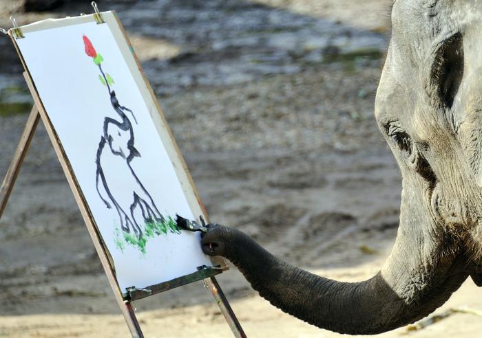 Слон рисует слона. \ Фото: edition.cnn.com.
