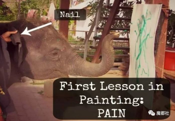 Уроки рисования и команды. \ Фото: wemp.app.