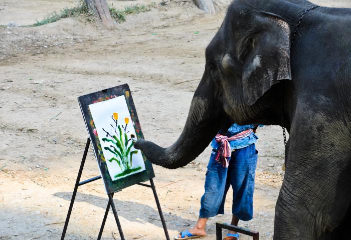 Слон-художник. \ Фото: google.com.