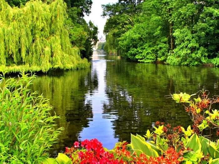 Парк и озеро. Букингемский дворец.