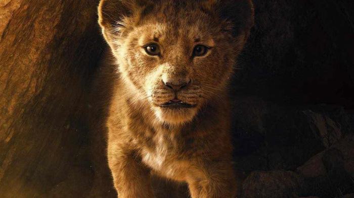 Кадр из фильма Король лев.