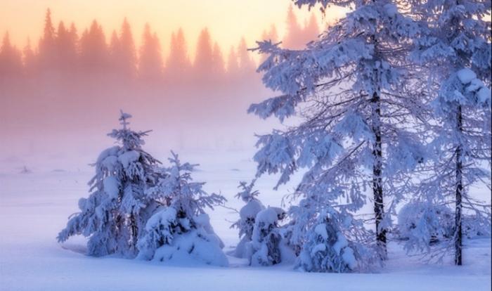Зимнее очарование.