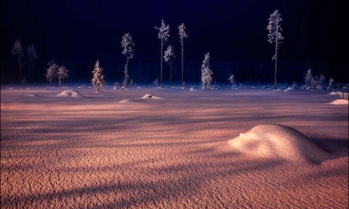 Волшебная зимняя ночь.