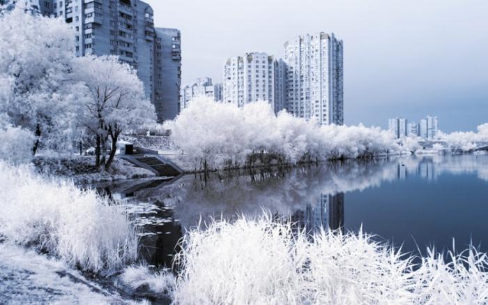 Сочетание природы с высотными зданиями. Киев.
