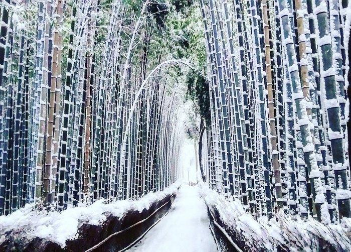 Снегопад в Киото, Япония.