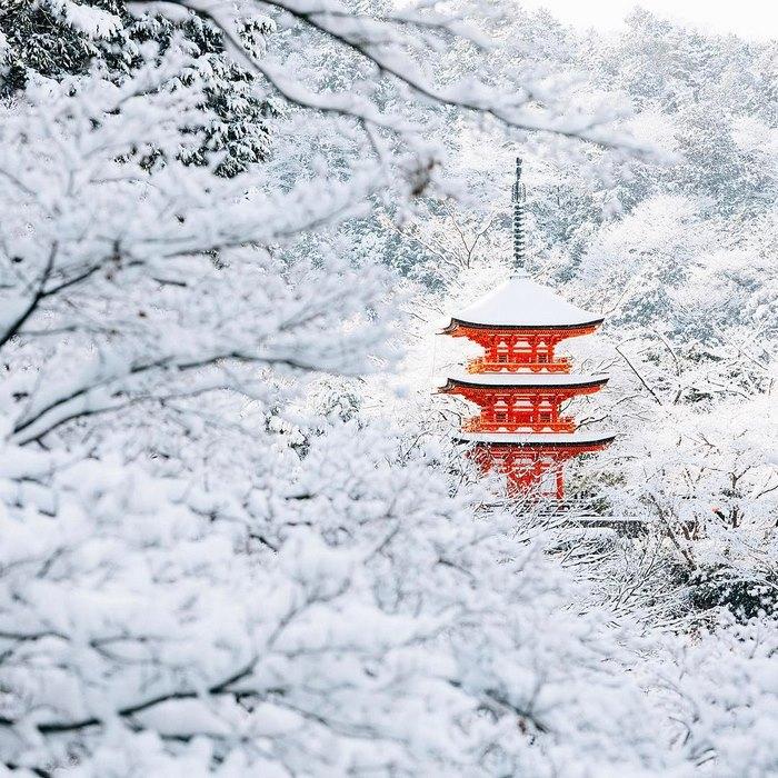 Зимняя сказка, Киото.