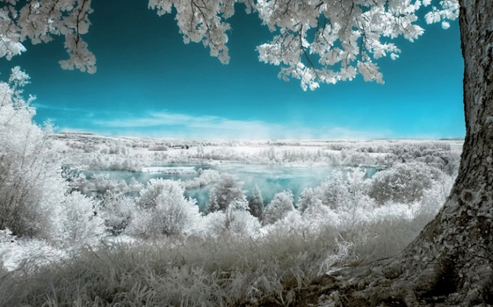 Картинки с необыкновенной и редкой красотой природы